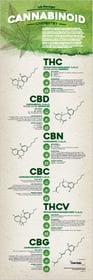 cannabis small