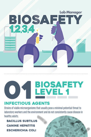 biosafety Infographic
